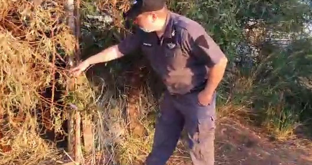 הפקח המסייע מאתר את השטח (1)