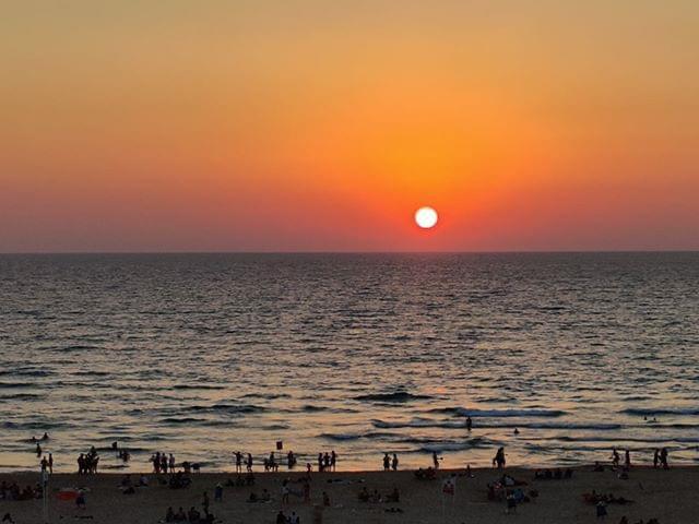 חוף ראשון. צילום: איילה מנץ' לבנון