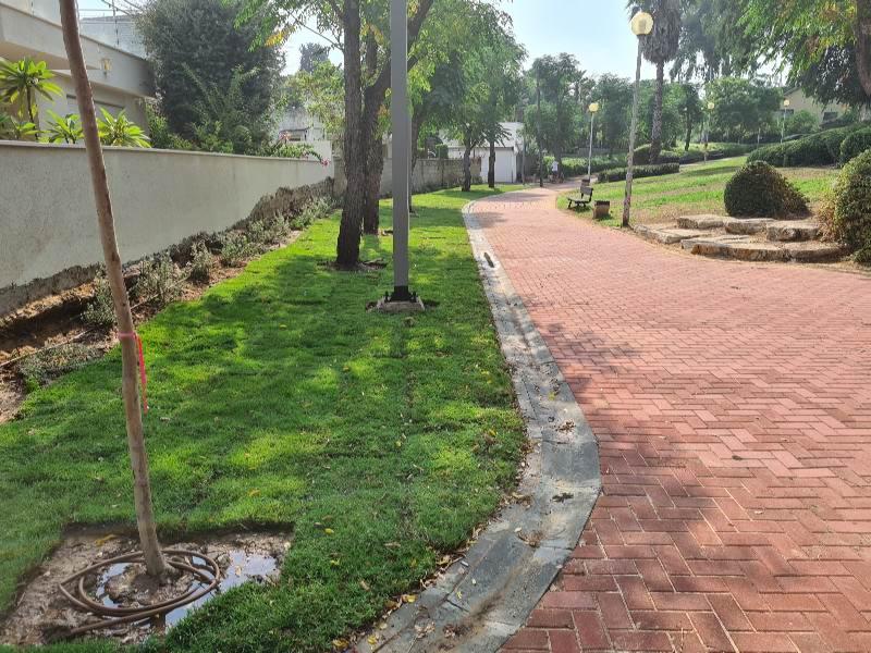 גינה שביל רחוב דשא צילום עיריית חולון