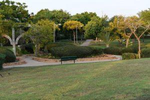 פארק צילום עיריית ראשון לציון