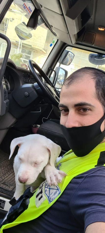 ליאור לוי חילוץ כלב צילום ידידים סיוע בדרכים