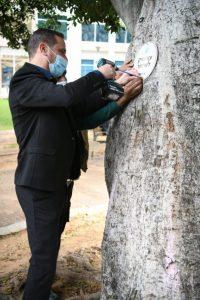 רז קינסטליך עץ ותיק שלט צילום דוברות עיריית ראשון לציון