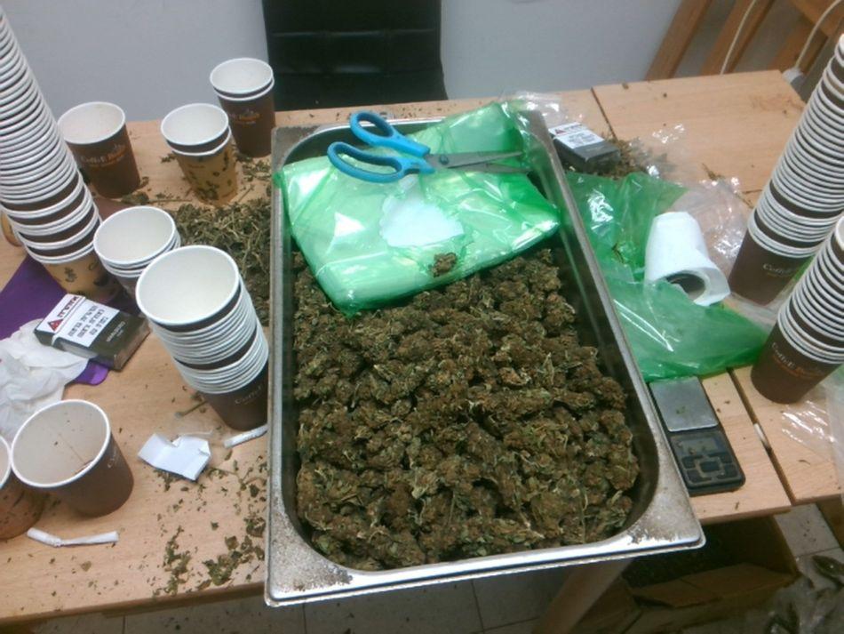 סמים מריחואנה צילום דוברות משטרת ישראל