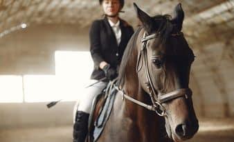 רוכב על סוס