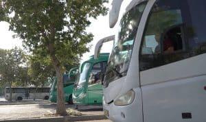 אוטובוסים צילום דוברות משטרת ישראל