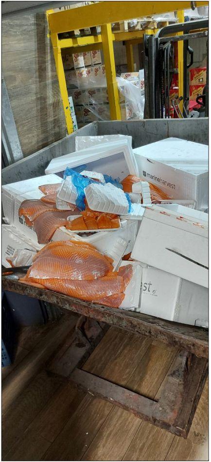 חלק מהבשר מובל להשמדה- צילום משרד הבריאות
