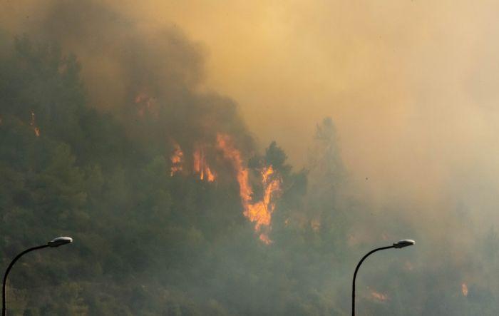 השריפה בפאתי ירושלים. צילום: נדב יופה נבו