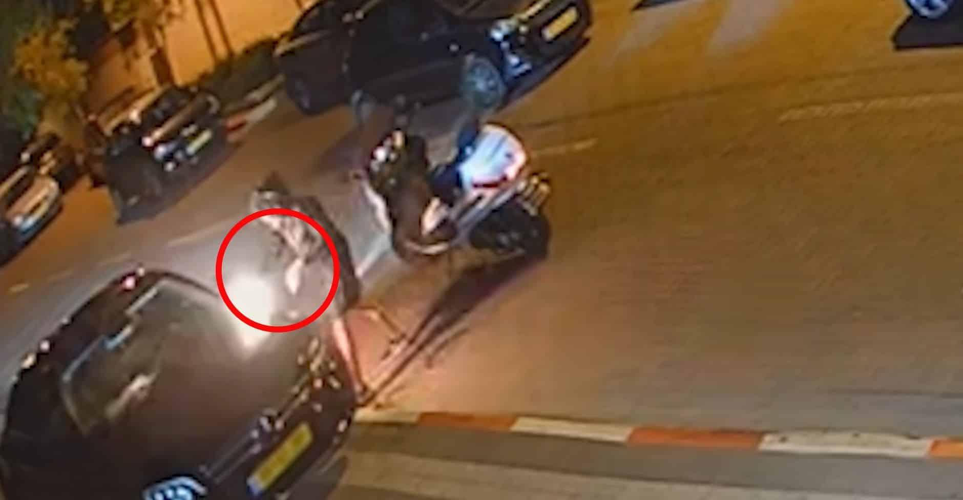 הצתת אחד הרכבים- צילום דוברות משטרת ישראל